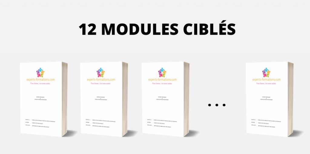 12 MODULES CIBLÉS